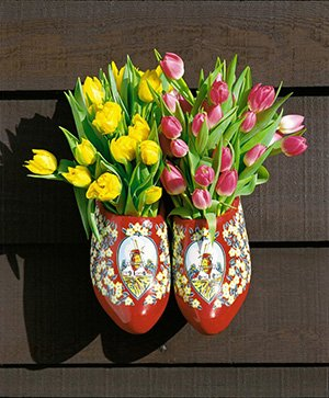 Amsterdam day tours: decoration with clogs and tulips