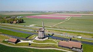 windmills Schermerhorn